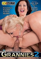 TAG TEAMING GRANNIES 2 DVD preview image #1