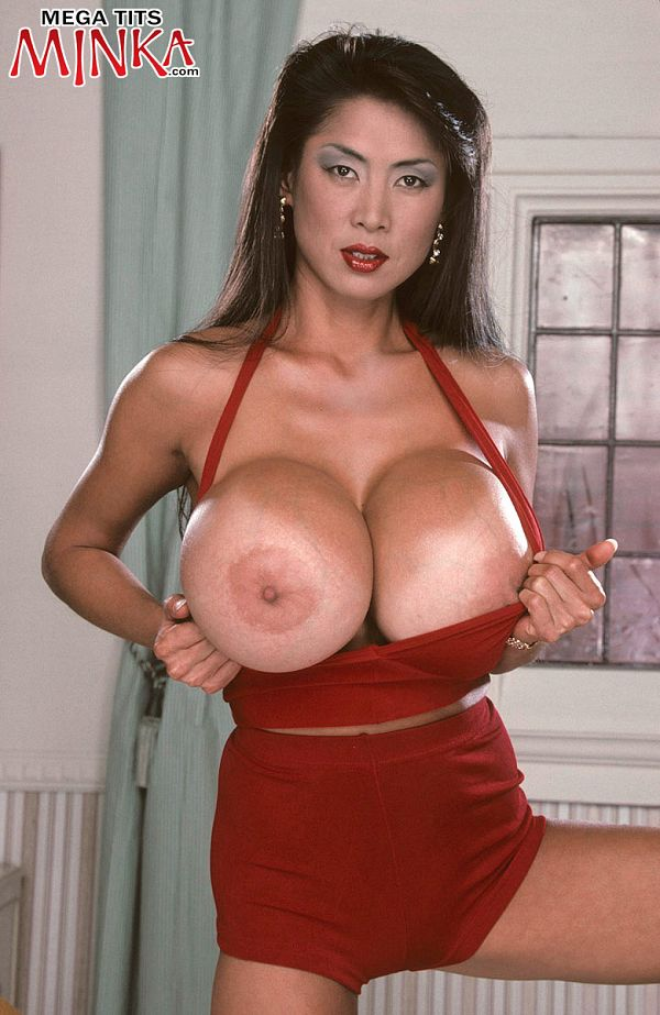 Asian Bra Busters
