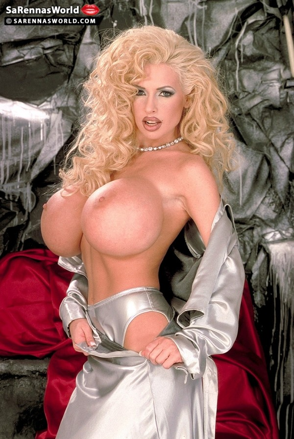SaRenna Silver Dress